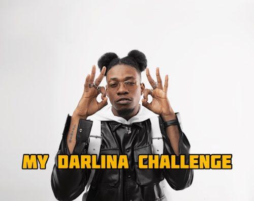 King Perryy – My Darlina Challenge