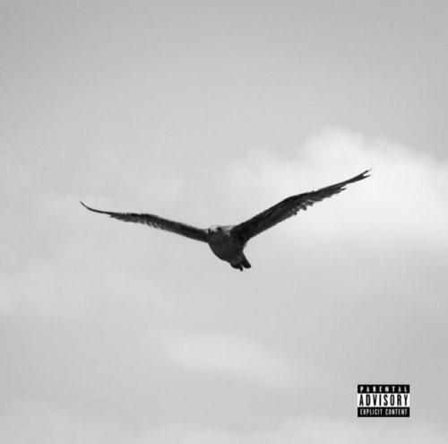 Royce Youngblood – Bird