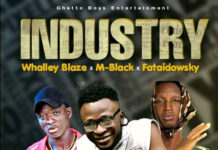 Whalley Blaze - Industry